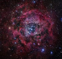 The Rosette Nebula Fine Art Print