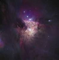 The Center of the Orion Nebula (The Trapezium Cluster) Fine Art Print