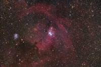 The Cone Nebula region in Monoceros Fine Art Print