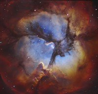 The Trifid Nebula in Sagittarius Fine Art Print