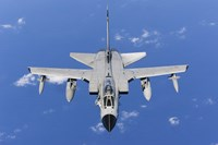 A Panavia Tornado IDS of the Italian Air Force (top view) Fine Art Print
