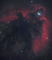 Cometary Globule in Orion Fine Art Print