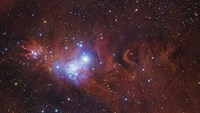 The Cone Nebula Region by Robert Gendler - various sizes - $47.49