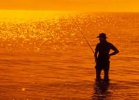 Fishing, Surfer's Paradise, Australia Fine Art Print