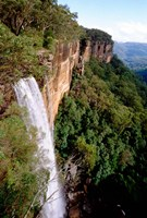 Australia, New South Wales, Fitzroy Falls by Cindy Miller Hopkins - various sizes