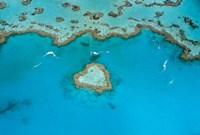 Australia, Whitsunday Islands, Heart Reef Fine Art Print