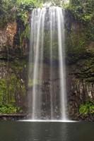 Millaa Millaa Falls, Queensland, Australia by David Wall - various sizes