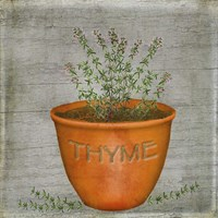 Herb Thyme Fine Art Print
