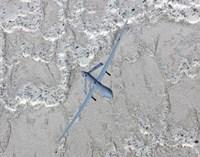 An MQ-1 Predator Flies a Training Mission over New Mexico Fine Art Print