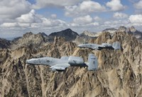 Two A-10 Thunderbolt's in Central Idaho Fine Art Print