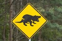 Tasmanian Devil warning sign, Tasman Peninsula, Australia by David Wall - various sizes