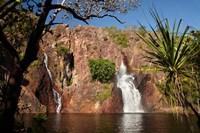 Cascade of Wangi Falls, Litchfield National Park, Northern Territory, Australia by David Wall - various sizes