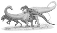 Group of Allosaurus Attack a giant Diplodocus Fine Art Print