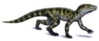 Protosuchus Fine Art Print