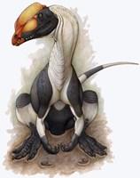 Dilophosaurus Fine Art Print