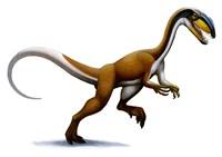 Megapnosaurus Fine Art Print