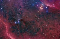Widefield View in the Orion Constellation by John Davis - various sizes - $47.99