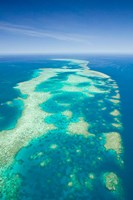 Australia, Cairns, Great Barrier Reef, Elford Reef Fine Art Print