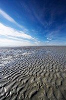 Beach, Doctors Point, South Island, New Zealand (vertical) by David Wall - various sizes - $28.99