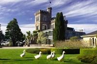 Larnach Castle, Otago Peninsula, Dunedin, South Island, New Zealand by David Wall - various sizes
