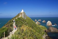 Lighthouse, Nugget Point, South Island, New Zealand by David Wall - various sizes