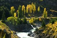 Autumn Colours, Kawarau River, Kawarau Gorge, South Island, New Zealand Fine Art Print