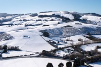 Winter snow near Invermay Research Centre, Taieri Plain, South Island, New Zealand Fine Art Print