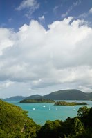 Australia, Whistsunday, Airlie Beach, Shute Harbour by Walter Bibikow - various sizes