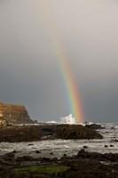 New Zealand, South Island A rainbow arcs over Curio Bay by Jaynes Gallery - various sizes