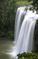 Whangarei Falls, Whangarei, Northland, New Zealand by David Wall - various sizes, FulcrumGallery.com brand
