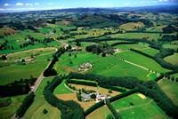 Farmland, Brookby, South Auckland, New Zealand by David Wall - various sizes - $36.99