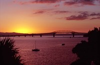 Auckland Harbour Bridge and Waitemata Harbour at Dusk, New Zealand by David Wall - various sizes
