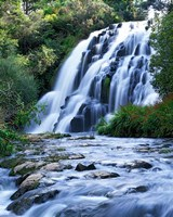 Cascade, Karangahake Gorge, North Island, New Zealand Fine Art Print