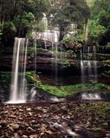 Australia, Tasmania, Mount Field NP, Russell Falls by Walter Bibikow - various sizes, FulcrumGallery.com brand