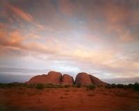 The Olgas, Uluru-Kata Tjuta NP, Northern Territory, Australia by Walter Bibikow - various sizes