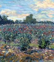 Roses by Robert Blehert - various sizes