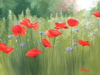 Backyard Poppies Fine Art Print