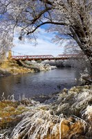 Historic Suspension Bridge, Taieri River, South Island, New Zealand by David Wall - various sizes
