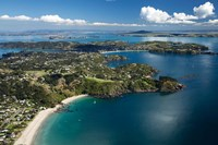 Palm Beach, Waiheke Island, North Island, New Zealand by David Wall - various sizes - $40.99