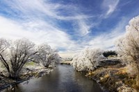Taieri River, Sutton, Otago, South Island, New Zealand by David Wall - various sizes, FulcrumGallery.com brand