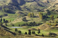 Farmland near Bells Junction, Rangitikei District, Central North Island, New Zealand by David Wall - various sizes - $40.99