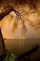 City Lights across Lake Rotorua, Rotorua, Bay of Plenty, North Island, New Zealand by David Wall - various sizes