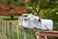 Letterboxes, King Country, North Island, New Zealand by David Wall - various sizes, FulcrumGallery.com brand