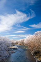 Manuherikia River and Hoar Frost, Ophir, Central Otago, South Island, New Zealand Fine Art Print