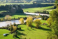 Rangitikei River, near Ohingaiti, Rangitikei, North Island, New Zealand by David Wall - various sizes, FulcrumGallery.com brand