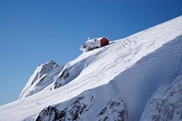Hut, Franz Josef Glacier, South Island, New Zealand by David Wall - various sizes, FulcrumGallery.com brand