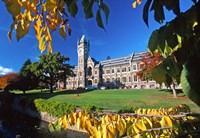 The Clocktower, University of Otago, Dunedin, New Zealand by David Wall - various sizes