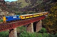 Taieri Gorge Train, near Dunedin, Otago, New Zealand by David Wall - various sizes