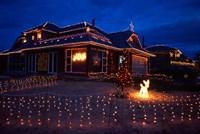 Christmas Lights, Waldronville, Dunedin, New Zealand by David Wall - various sizes