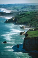 Dunedin Coast near Tunnel Beach, New Zealand by David Wall - various sizes